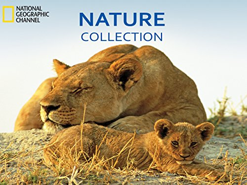 Nature Collection  Season 1