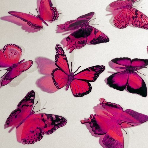 Butterfly 3D HOT PINK Butterflies Translucent Decoration 15 count - 1