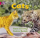 Cats: Band 01b/Pink B (Collins Big Cat) (0007185480) by Llewellyn, Claire