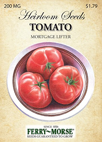 Ferry-Morse Seed Company Tomato Mortgage Lifter Vegetable Plant (Tomato Seeds Mortgage Lifter compare prices)