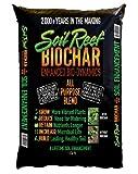 51YRJCHo8XL. SL160  Biochar