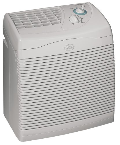 Cheap Hunter 30124 Hepatech 124 Air Purifier (B0002SP5G4)