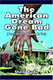 The American Dream Gone Bad: Don't Let This Happen To You (141375418X) by Burke, Sheila