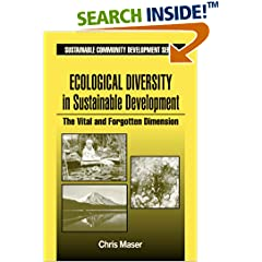 روی جلد کتاب میسر که در سال 1999 منتشر شده است