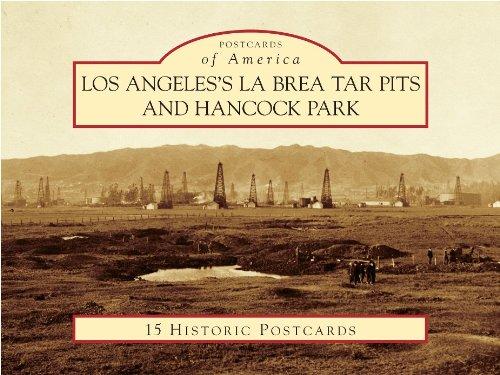 Los Angeles's La Brea Tar Pits and Hancock Park (Postcards of America)