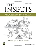 img - for The Insects: An Outline of Entomology book / textbook / text book