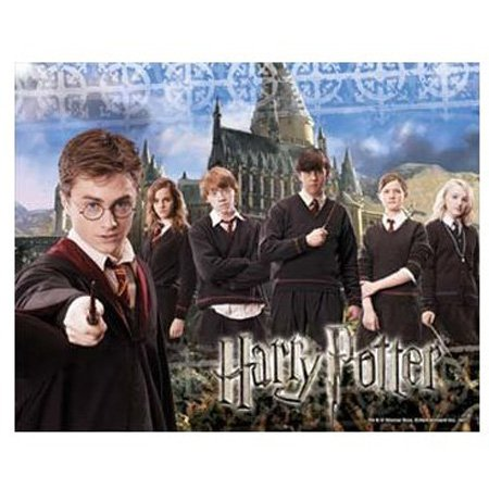 Picture of Hobbico Visual Echo 3D Effect Harry Potter Army Outside Hogwarts 100pc Lenticular Puzzle (B000YBBYXM) (3D Puzzles)