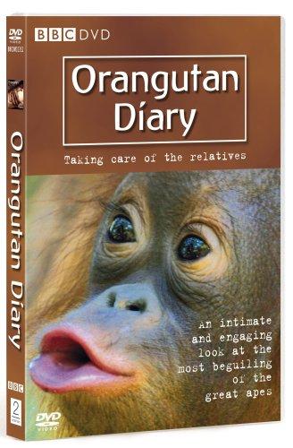 Orangutan Diary  - Series 1 [DVD] [2007]