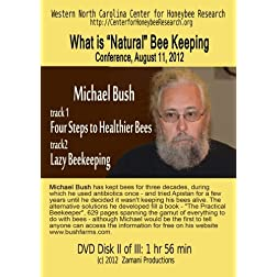 "What is ""Natural"" Beekeeping? Michael Bush"