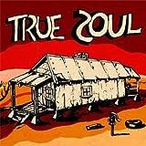 echange, troc Compilation, The Leaders - True Soul /Vol.1