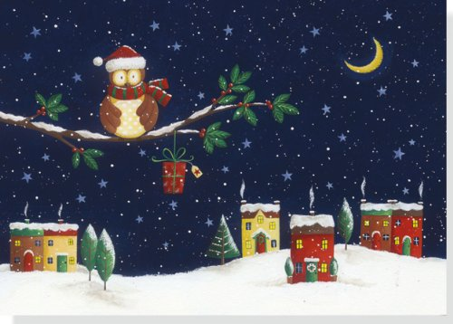 Jolly Owl Holiday Boxed Cards (Christmas Cards, Holiday Cards, Greeting Cards)