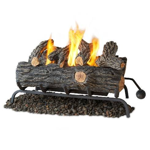 Discover Bargain Real Flame 24  Convert-to-Gel Log Set In Oak