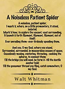 """walt whitman a noiseless patient spider essay """" in """"a noiseless patient spider,"""" whitman compares humans to a spider in nature he says as spiders throw out their web, so do we also try to throw out our """"web"""" to make connections with the universe."""