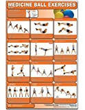 Medicine Ball Exercises - Basics Laminated (Poster)