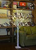 Lightshare™ NEW 4FT 48L LED Birch Tree,+Free Gift:10L LED Icicle Twinkling(white/Blue)Decoration Light,Home/Festival/Party/Christmas,Indoor and Outdoor Use,Warm White