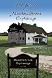 img - for The Secret Of Meadowbrook Orphanage book / textbook / text book