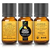 Essential-Oils-Aromatherapy-Essential-Oil-Set-Lavender-Tea-Tree-Eucalyptus-Lemongrass-Orange-Peppermint-100-ORGANIC-Natural-Formula-The-Top-6-Most-Popular-Therapeutic-Grade-Oils-on-Amazon