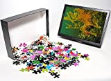 Photo Jigsaw Puzzle of Leafy Sea Dragon ...