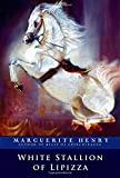 img - for White Stallion of Lipizza book / textbook / text book