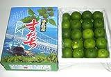 徳島産 すだち2Lサイズ 1kg(39個前後)