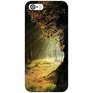 Printland Back Cover For Apple iPhone 5S - Rays Phone Cover (Printed Designer)