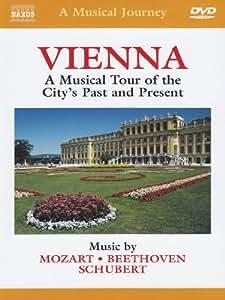 A Musical Journey - Vienna [DVD] [2004]