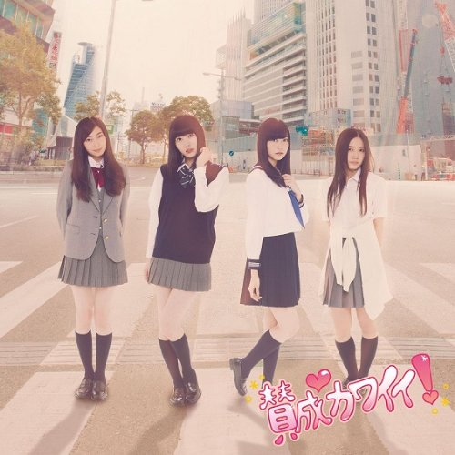 [Single](DVDISO) SKE48 – 賛成カワイイ! Sansei Kawaii! (Download)[2013.11.20]