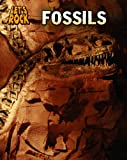 img - for Fossils (Let's Rock) book / textbook / text book