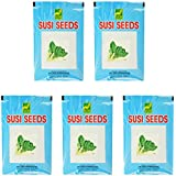 Susi Seeds Radish Seeds (Red, Pack Of 5,100 Grams)