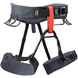 Black Diamond Momentum Climbing Harness - Men's