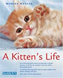 img - for A Kitten's Life book / textbook / text book