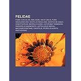Felidae: Puma Concolor, Smilodon, Uncia Uncia, Puma Yagouaroundi, Neofelis Nebulosa, Dientes de Sable, Homotherium...