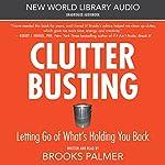 Clutter Busting   Brooks Palmer