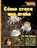 img - for Como Crece una Arana = A Spiderling Grows Up (Scholastic News Nonfiction Readers en Espanol) (Spanish Edition) book / textbook / text book