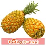 山川さんのスナックパイン約5kg(5~8玉入) ランキングお取り寄せ