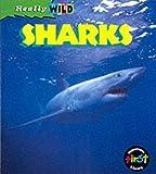 Shark (Really Wild)