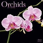 Orchids - Orchideen 2017: Original Av...
