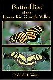 Butterflies Of The Lower Rio Grande