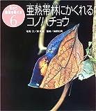 亜熱帯林にかくれるコノハチョウ (虫から環境を考える)