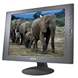 Sony SDM-S51/B 15&quot; LCD Monitor (Black)