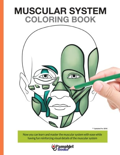 Anatomy Coloring Book Example Pdf Epub Kaplan