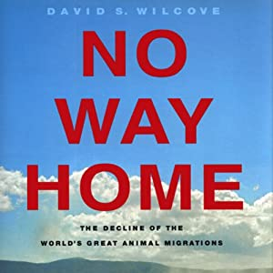 No Way Home: The Decline of the World's Great Animal Migrations | [David S. Wilcove]