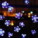 InnooTech Bright 50 Blossom Solar Powered Led String Light Fairy Blue Flower Decorative Indoor Outdoor Garden Christmas Tree