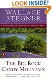 The Big Rock Candy Mountain (Peguin Classics)