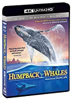 IMAX: Humpback Whales (4K UHD / 3-D Bluray/ Digital Copy) [Blu-ray] by Shout! Factory