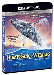 IMAX: Humpback Whales (4K UHD / 3-D Bluray/ Digital Copy) [Blu-ray] by Shout! Factory