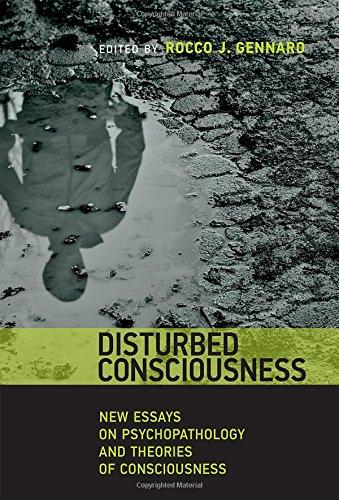 essays on conscience