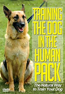 Training The Dog In The Humanpack