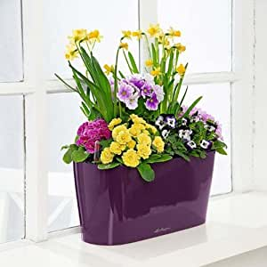 Self watering planter for windowsills small - Planters for small spaces ...