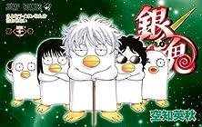銀魂 第41巻 2011年09月02日発売